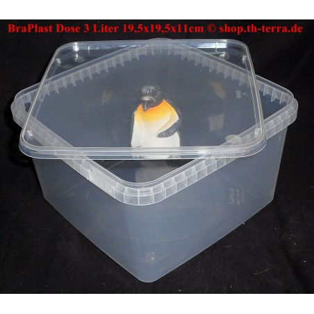 BraPlast 3,0l 19,5x19,5x11cm transparent