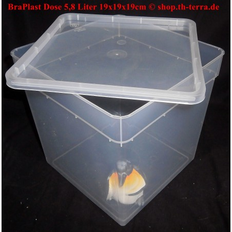 BraPlast Dose 19x19x19 cm (5,8 l)